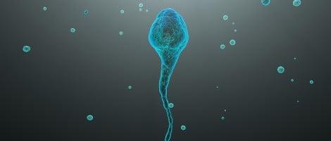 Congelamento di sperma: indicazioni