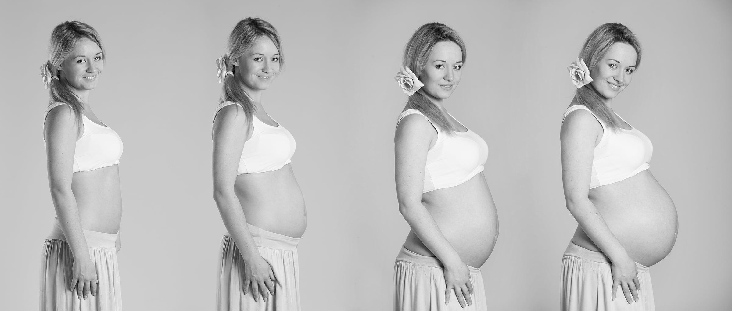 Le varie tappe della gravidanza
