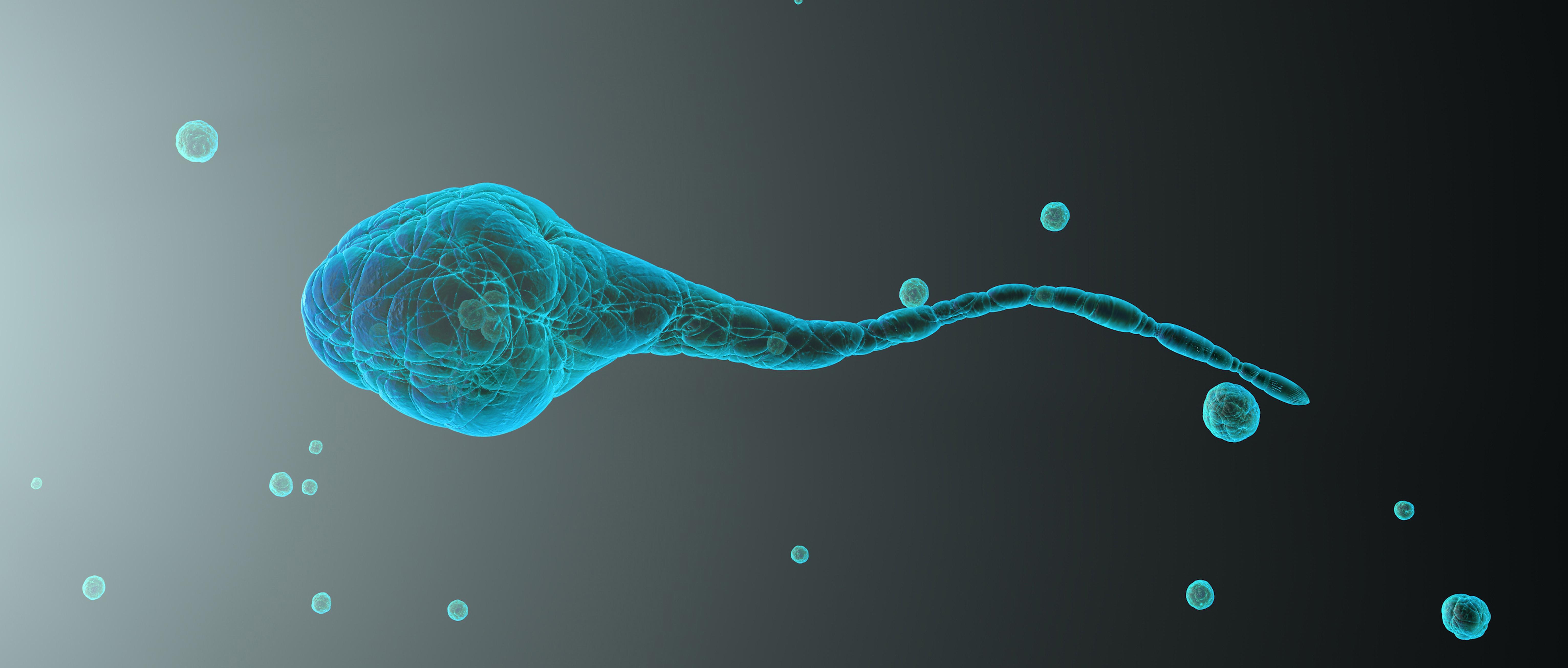 I problemi d'infertilità maschile trovano rimedio nelle tecniche di agopuntura