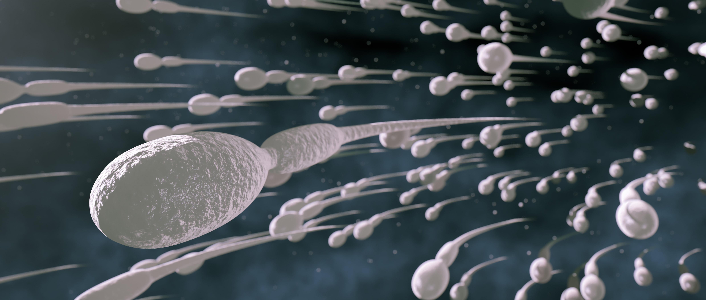 Сперма из дырочек смотреть, Сперма вытекает из дырок -видео. Смотреть 25 фотография